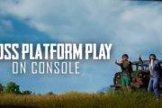 В PUBG заработала кроссплатформенная игра между Xbox One и PS4