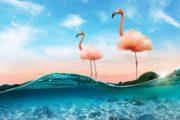 Photoshop получил множество ИИ-функций: умная замена неба, продвинутые фильтры и прочее